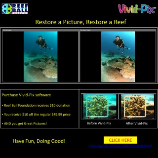 Reef Ball - Restore a Picture, Restore a Reef